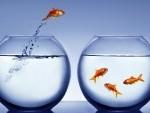 The Pitfalls of Seeking an Outside Promotion!